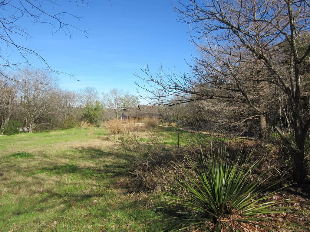 San Antonio Botanical Gardens Native Area
