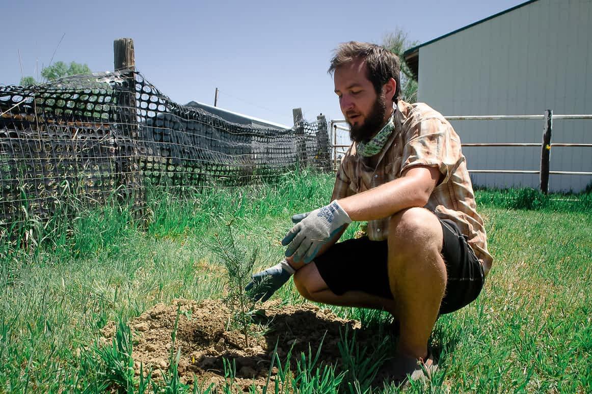 Leo planting trees