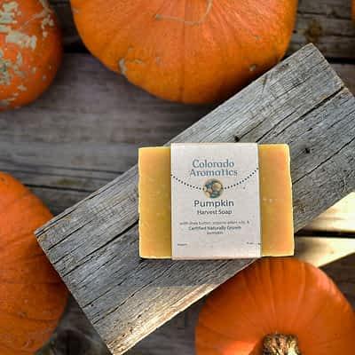 Seasonal Soap Pumpkin Harvest