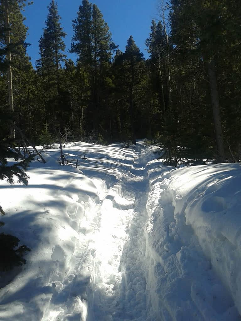 Peaceful Valley snowy trail